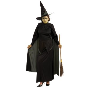 The Wizard of Oz Wicked Witch Costume